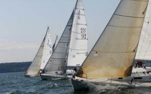 Sailboat fleet