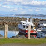 Blake Island sailboats